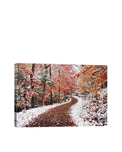 Ben Heine Two Seasons Gallery-Wrapped Canvas Print