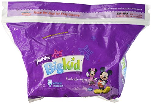 Huggies Pull-Ups Big Kid Flushable Wipes Pack - 102ct - 1