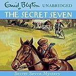 Secret Seven: 9: Secret Seven Mystery | Enid Blyton