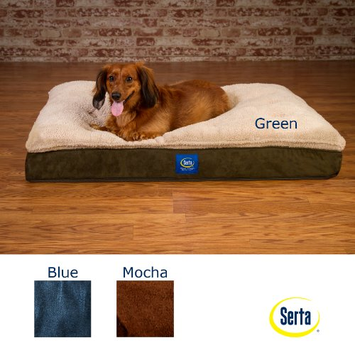 The Best Dog Beds 178719 front