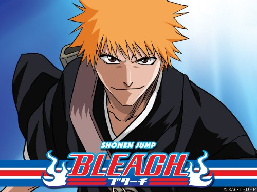Bleach: (English Dubbed) The Substitute Season 1