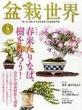 盆栽世界 2015年 04 月号 [雑誌]