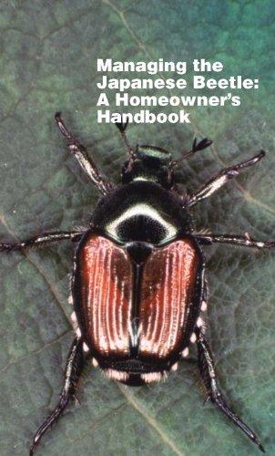 managing-the-japanese-beetle-a-homeowners-handbook