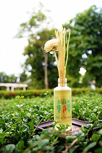 Kaew Kalaya Orange Jasmine Flower Murraya paniculata Natural Scented Fragrance Oil Reed Diffuser - 1.72 Oz (50ml) Glass Bottle with Reed Sticks and Long Lasting