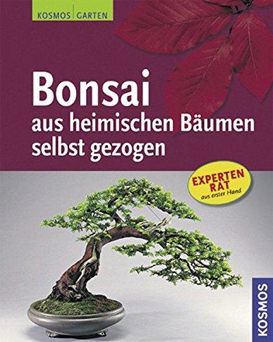 bonsai-aus-heimischen-baumen-selbst-gezogen