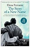 img - for The Story of a New Name: Neapolitan Novels, Book Two book / textbook / text book