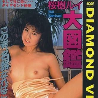 ダイヤモンド映像/桜樹ルイ大図鑑 [DVD]