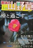 趣味の山野草 2016年 01 月号 [雑誌]