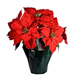 16 Inch Artificial Potted Poinsettia Plant in Wrapped Base-Deep Red Velvet Petals