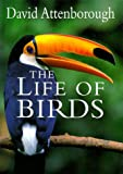 img - for The Life of Birds book / textbook / text book