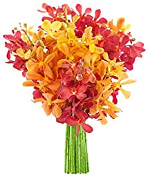Kabloom Phoenix Rising with Red and Yellow Mokara Orchids (10 Stems) - Without Vase