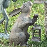 SPI Home 33072 Rabbit Lantern