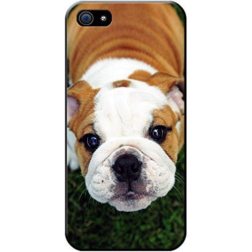 british-bulldog-ingles-rigida-carcasa-para-telefonos-moviles-plastico-cute-innocent-puppy-bulldog-ap