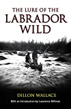 img - for Lure of the Labrador Wild (Arctic Adventure) book / textbook / text book