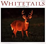 Cal 99 Whitetails (0896583880) by Bauer, Erwin