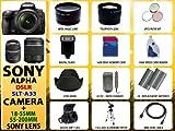 Sony Alpha Dslr-slt-a33 Digital Camera with