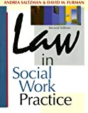 Law in Social Work Practice (The Nelson-Hall Series in Social Welfare)
