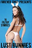 img - for Lust Bunnies - 16 Filthy Stories book / textbook / text book