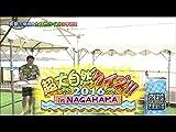 #244『超大自然クイズ2016!! in NAGAHAMA!?前半戦?』