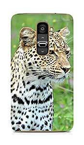 Amez designer printed 3d premium high quality back case cover for LG G2 (Leopard)