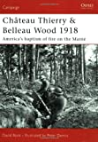 Chateau Thierry & Belleau Wood 1918: The AEF's baptism of fire on the Marne