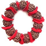 Divya Shakti 6 Mukhi Rudraksha Bracelet (15 MM Rudraksh ) Mars Bracelet - Nepal Beads ( Religious Item )