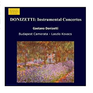 Donizetti - Instrumental Concertos by Marco Polo