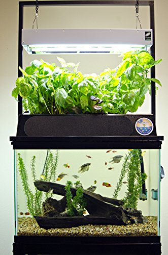 ECO-Cycle Aquaponics Kit w/ Dual T5 Grow Light Review