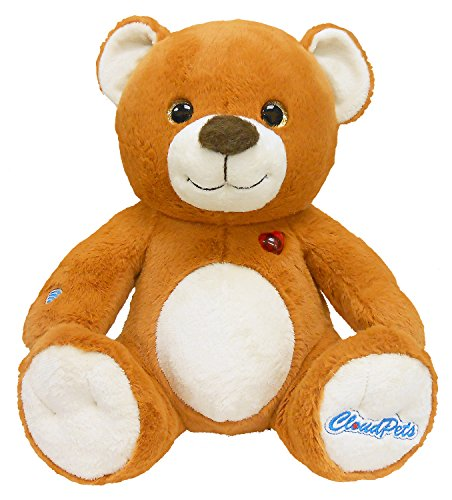 CloudPets 12in Talking Teddy Bear - The Huggable Pet to Keep in Touch Through the Cloud, Recordable Stuffed Animal (Stuffed Animal In A Can compare prices)