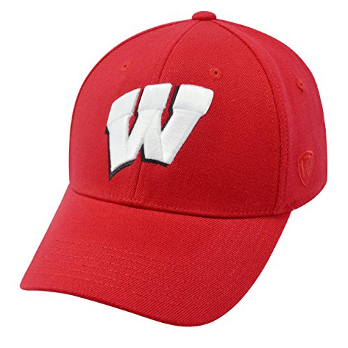 Wisconsin Badgers Official NCAA One Fit Wool Hat Cap by Top of the World 268330 (Wi Badger Hat compare prices)