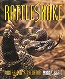 Rattlesnake: Portrait of a Predator
