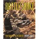 Rattlesnake - Portrait of a Predator