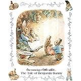 Beatrix Potter Benjamin Bunny Art Print Poster - 13x19by Poster