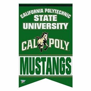 Amazon.com : NCAA Cal Poly San Luis Obispo Mustangs Premium Felt