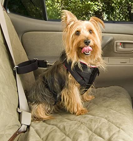 Solvit 62294 Pet Vehicle Safety Harness, Small $17.10