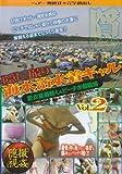 隠し撮り 海水浴水着ギャル Vol.2 [DVD]