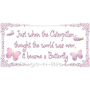 Amazon.com - Caterpillar Butterfly Quote Removable Vinyl Wall
