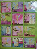 Disney Fairies Tinkerbell 16-month 2013 Wall Calendar (10x10)