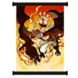 """Fairy Tail Anime Fabric Wall Scroll Poster (16"""" x 22"""") Inches"""