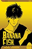 Banana Fish, Vol. 17 (Banana Fish (Graphic Novels))