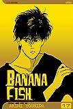 Banana Fish, Volume 17 (Banana Fish (Graphic Novels))