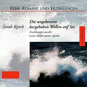 Die ungeheuren bergehohen Wellen auf See Hörbuch