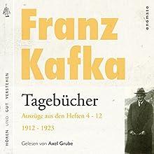 Franz Kafka: Tagebücher - Auszüge aus den Heften 4-12 von 1912-1923 Hörbuch von Franz Kafka Gesprochen von: Axel Grube