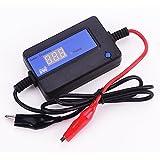 Lead Acid Batteries 12v 24v 36v 48v Battery Regenerator Auto Pulse Desulfator