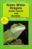 Green Water Dragons, Sailfin Lizards and Basilisks