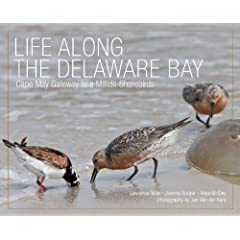 Life Along the Delaware Bay: Cape May, Gateway to a Million Shorebirds by Lawrence Niles, Joanna Burger, Professor Amanda Dey and Professor Jan Van de Kam