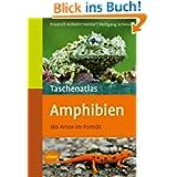 Taschenatlas Amphibien: 175 Arten für das Terrarium