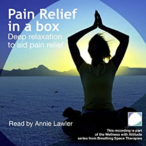 Pain Relief in a Box Audiobook