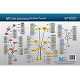 PgMP Exam Success Series: Processes Placemat (For Second Edition Program Standard) ~ Tony Johnson