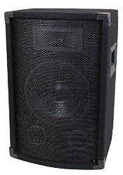 MCM Custom Audio 555-10300 8'' Two Way PA / DJ Speaker 300W by MCM Custom Audio